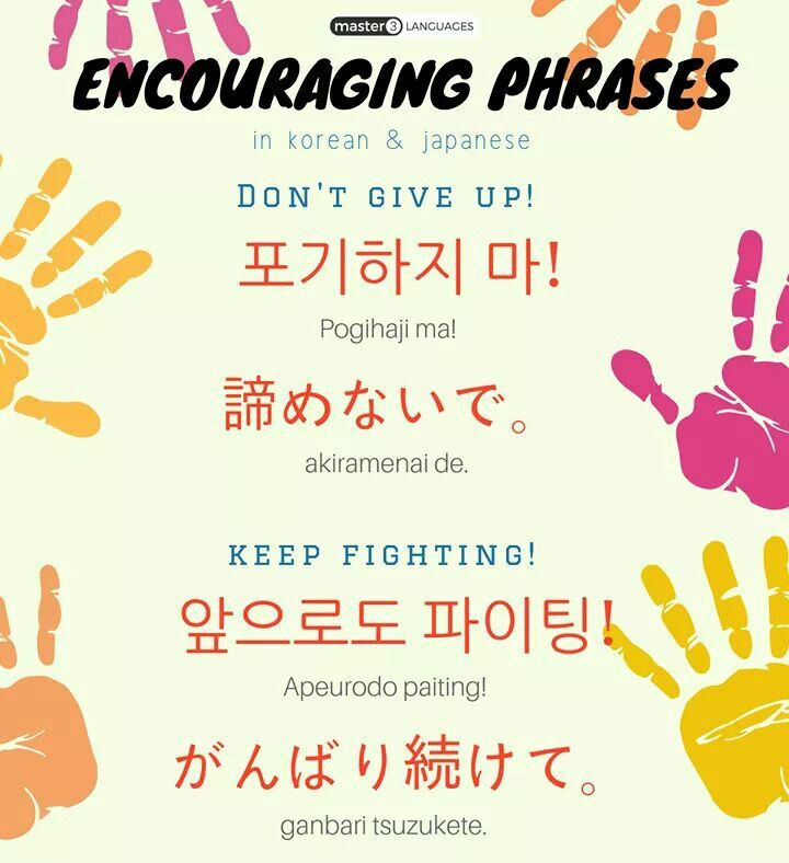 It Will Work If You Say To Anyone While Fighting Korean Phrases