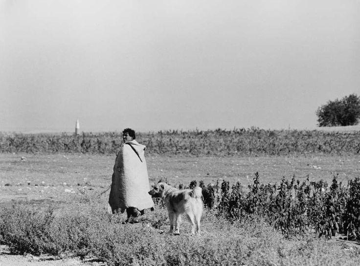 Mario Dondero - Pastore in Anatolia, 1965