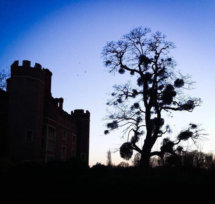 Hampton Court Palace, England Photo by: Danielle Yaghdjian