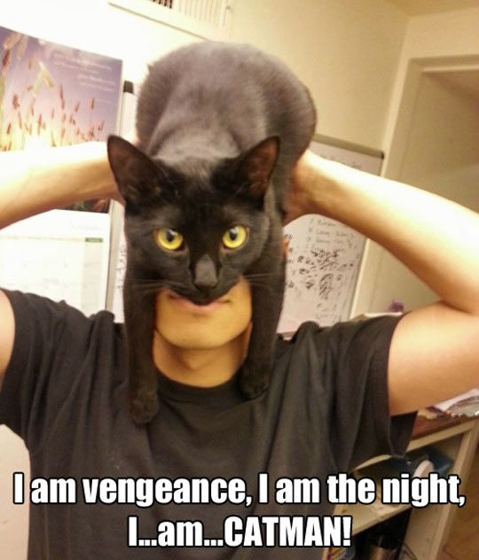 I am the night…