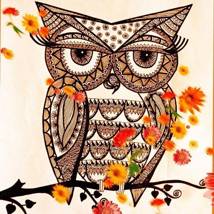 owl by Sketchii Studio