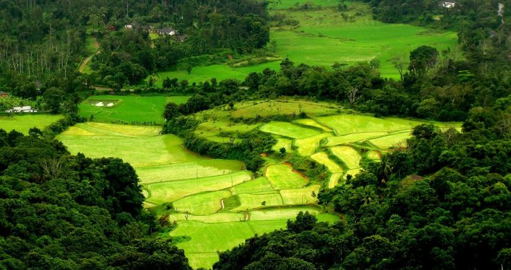 Scotland of India-Coorg