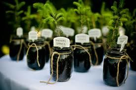 Living party favors! Could use flowers, fruits/veggies, tree starts, herbs...start early enough to ensure a 'visual' in time for party :)