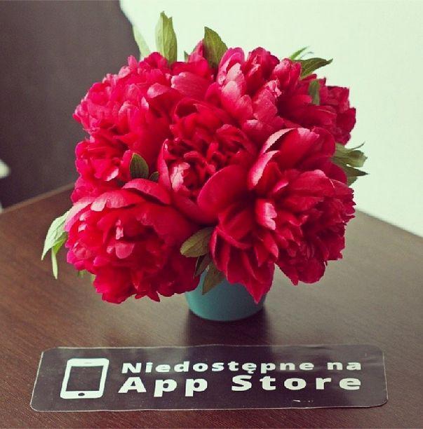 #peony #lover #notonappstore #flowers #red #spring #nakawenet http://na-kawe.net