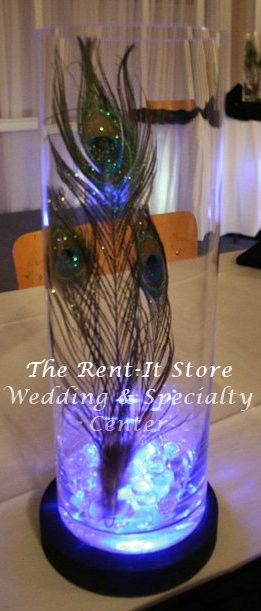 10 Images About White Peacock Wedding On Pinterest Teal Blue Centerpieces And Stamps