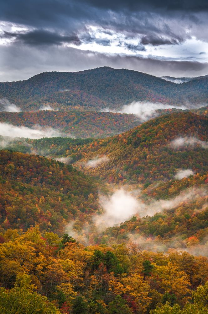 Fall in the Great Smoky Mountains! This is spectacular! More