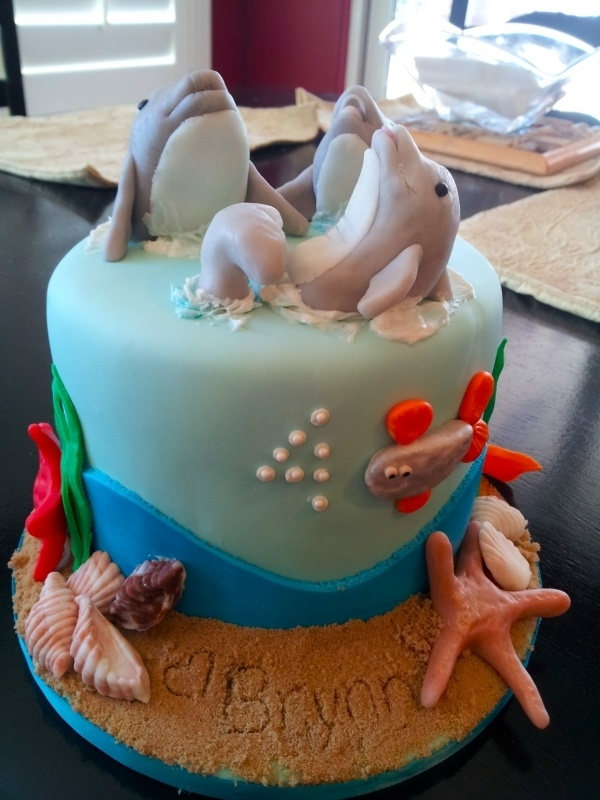 160 best images about animal dolphin on pinterest birthday on specialty birthday cakes auckland