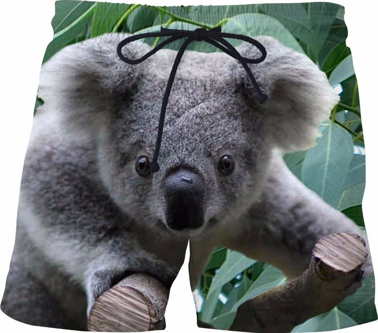 Check out my new product https://www.rageon.com/products/koala-and-eucalyptus-swim-shorts?aff=BWeX on RageOn!