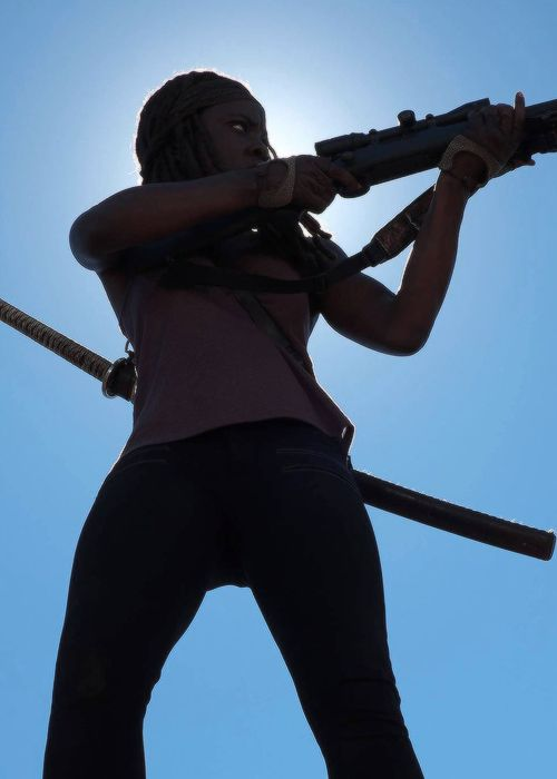 The Walking Dead - Far and away my favorite character from any pop culture ever. Sincerely love Danai Gurira's interpretation of Michonne.