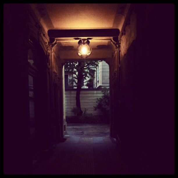 """""""#Portaveneziaindesign liberty courtyard - casa Guazzoni - via Malpighi 12 #mdw12"""