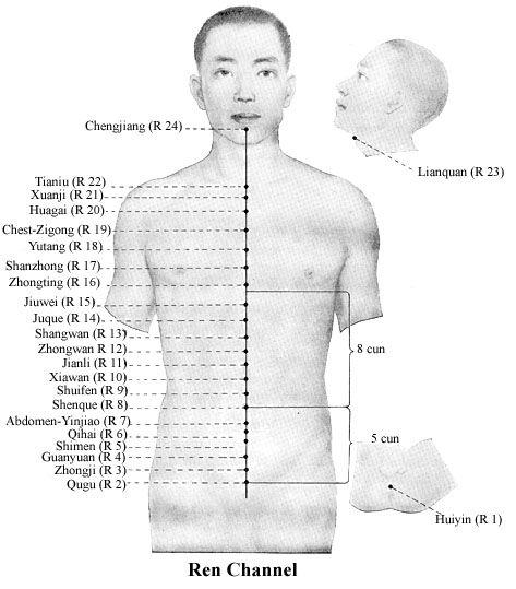 251 best images about acupuncture on pinterest