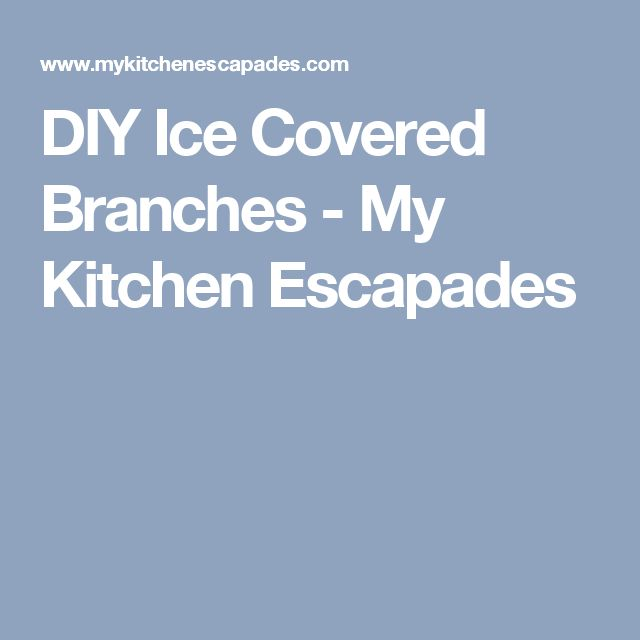 DIY Ice Covered Branches - My Kitchen Escapades