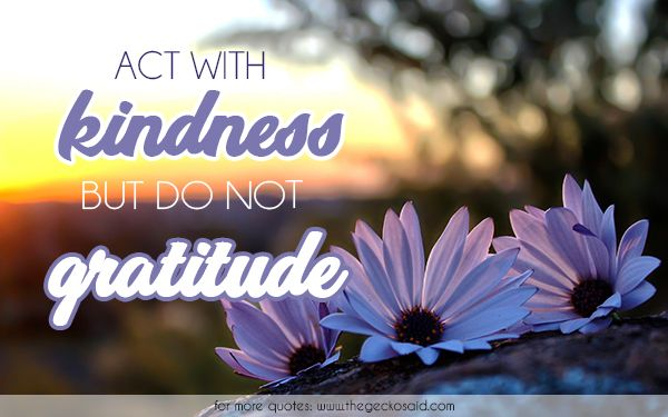 Act with kindness but do not expect gratitude.  #act #gratitude #kindness #quotes