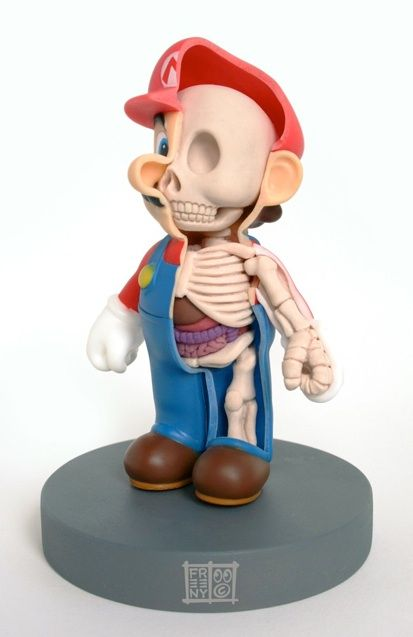 Anatomical Sculptures: Imagining the Insides of Pop Culture Toys: Sculpture, Jason Freeny, Mario Anatomy, Art, Toys, Jasonfreeny, Mario Bros, Super Mario