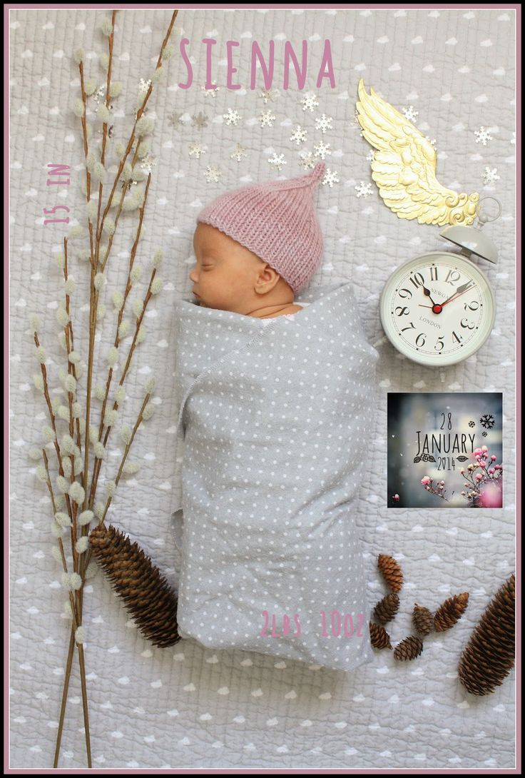 Sienna's birth announcement, blogged at Schatzi's knits: New life