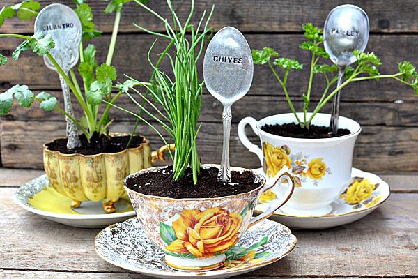 Repurpose teacups as planters for your herbs. Spoons pair nicely as markers!