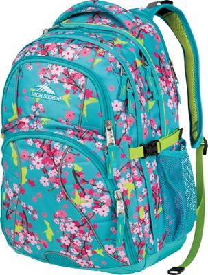 High Sierra Swerve Laptop Backpack- Women's Birds I have this in a different print/color and it's a really nice bag.