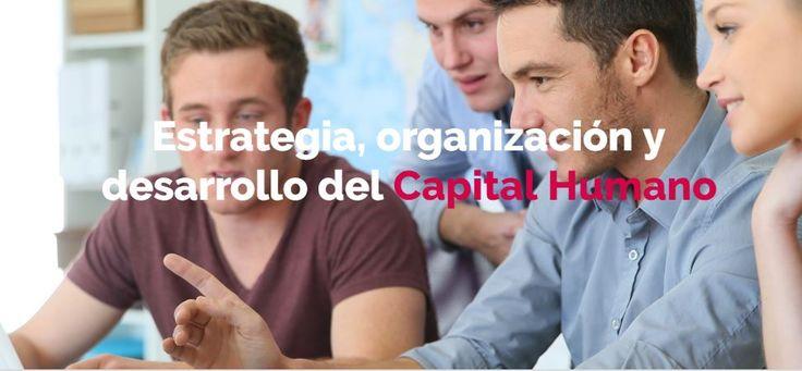 ¿Tienes una empresa y quieres desarrollar una estrategia para tu capital humano? En Empleo y Talento Cámara Valencia te ayudamos a gestionarlo para que tu empresa aproveche el máximo potencial de su equipo humano y se convierta en la palanca del éxito. Conoce nuestro servicios de RRHH: http://empleo.camaravalencia.com/estrategia_organizacion_desarrollo_capital_humano.php