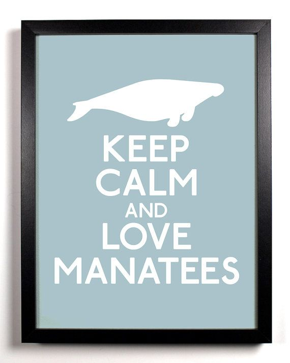 i can't believe this a real keep calm!! I love manatees.