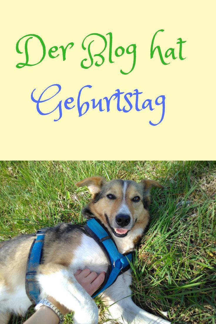 Der Blog Hat Geburtstag Geburt Hund Naturlich Und Blog