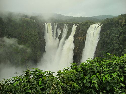 Jog Falls, created by the River Sharavathi, falling from a height of 253 meters (829 feet), is the highest waterfalls in India. Before the rainy season Jog Falls is nearly unrecognizable with only a pair of thin streams of water trickling down the cliff. But during the monsoon season the waterfall comes to life and exceeds even Kaieteur Falls in Guyana in terms of height and volume.