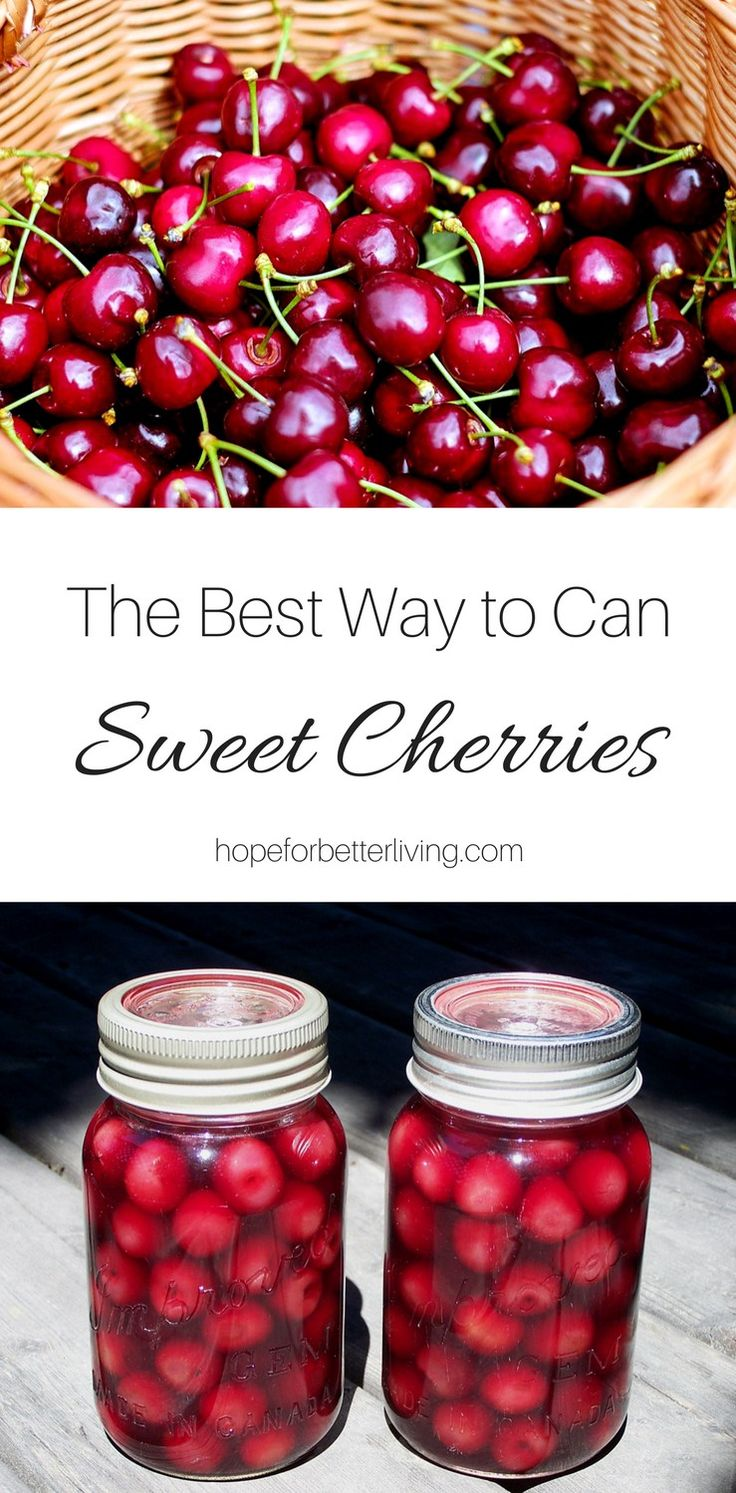 One of the most delicious ways to can sweet cherries is in cherry juice! Cut back on the sugars, lightly sweeten with honey and you'll have home canned cherries that are rich in fruit flavor!