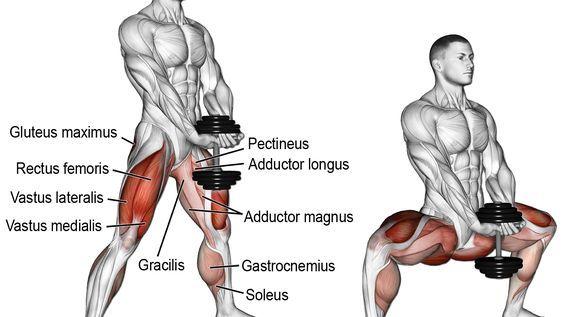 Dumbbell sumo squat exercise