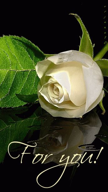 This is for you, all my followers. Thank You for all your lovely pins, Jade