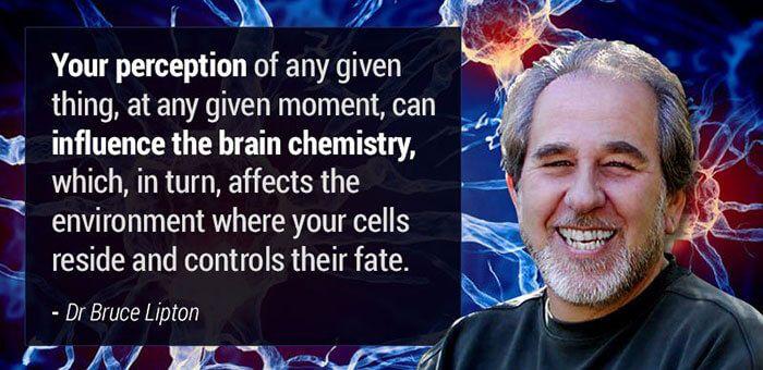 Bruce Lipton Quote Biology Of Belief Brain Chemistry Energy Medicine