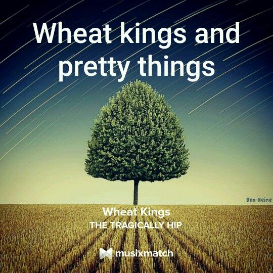Wheat Kings, The Tragically Hip Musixmatch Lyrics