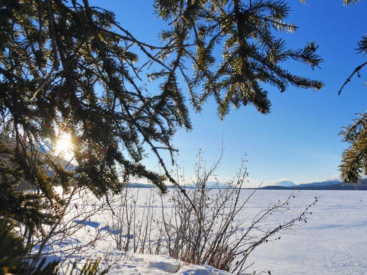Vue sur le lac Little Atlin, près du Little Atlin Lodge | Yukon, Canada