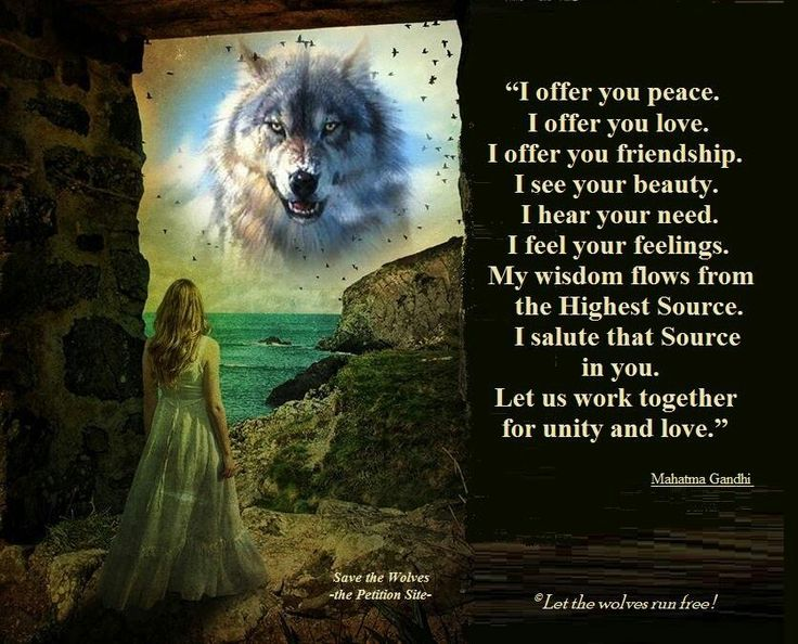 Wolves, Beautiful