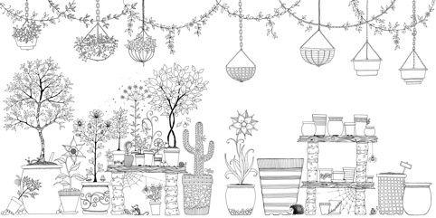 Pot Plant Pages From Inside Secret Garden By Johanna
