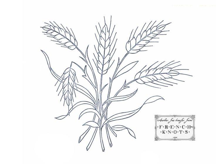 wheat_spray.jpg (800×607)