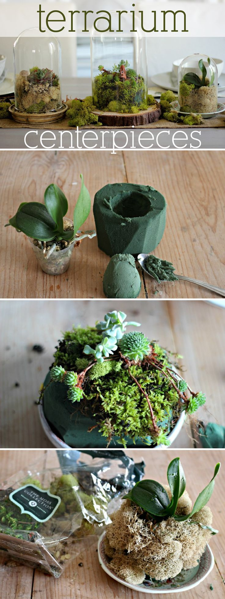Terrarium centerpieces are great for any season. Best part is that they're easy to make and last a long, long time. www.ehow.com/...