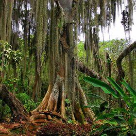 Parque Gallineral San Gil Santander Colombia Search / 500px