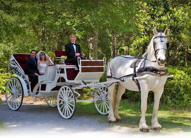 A Wedding Carriage Ride