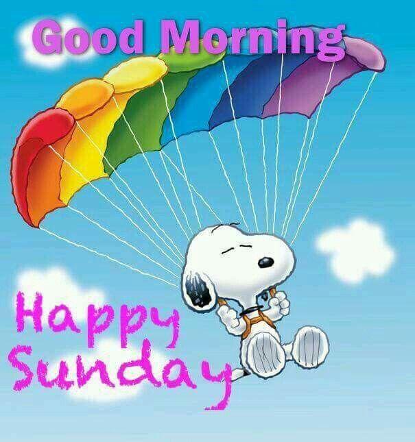✔ Good Morning!  Happy Sunday.   --Peanuts Gang/Snoopy