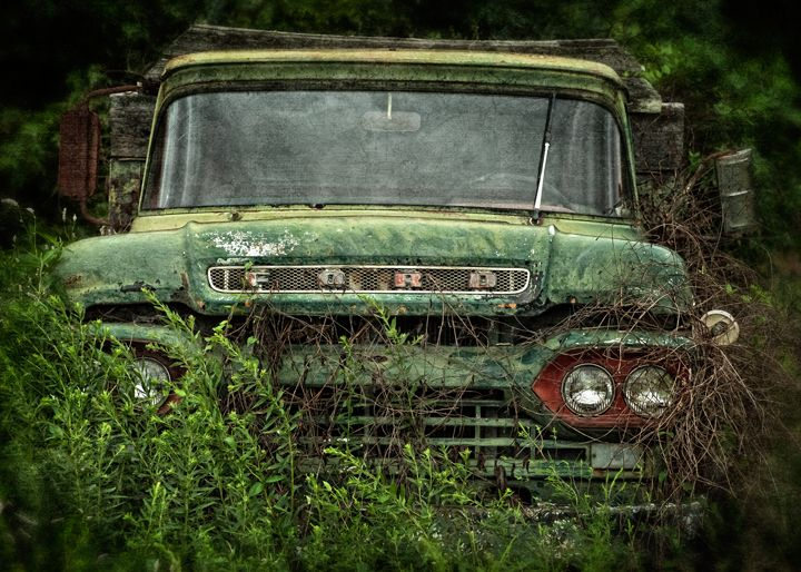 old Ford truck :: Dan Routh