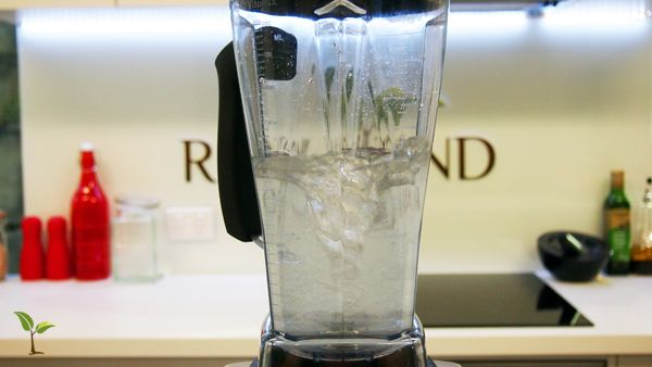 How to clean your Vitamix Container. | Raw Blend