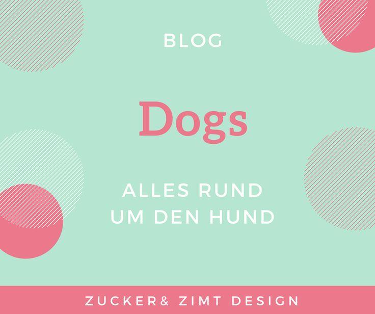 Alles rund um den Hund! Interesanntes, Wissenswertes, Tipps und Tricks für das Hundeleben und tolle Geschichten aus dem Alltag.