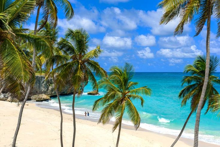 10 unmissable things to do in Barbados