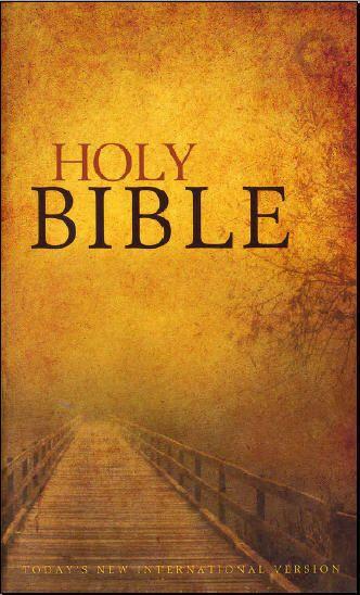 The Holy Bible- NIV