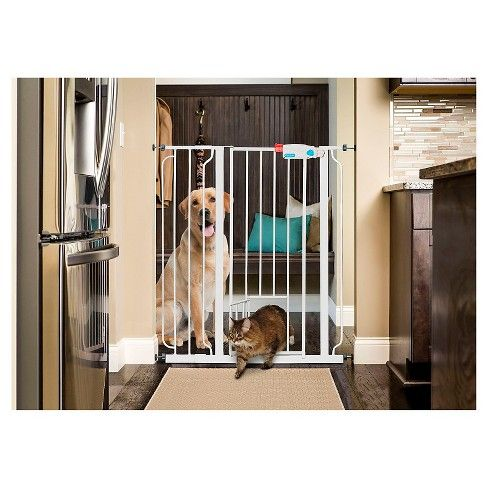 """The versatile Carlson Extra Tall Walk-Thru Pet Gate is a chew-proof way to protect not only your home but also your pet. <br>Made of an all-steel construction, the sturdy pet gate can be operated with ease and is designed to make passing through the gate frequently a breeze. <br>The 36"""" tall pet gate is easily expandable, featuring a pressure mount system for installation, and equipped with an easy to use door for pass through. <br>The expandable nature of the gate..."""