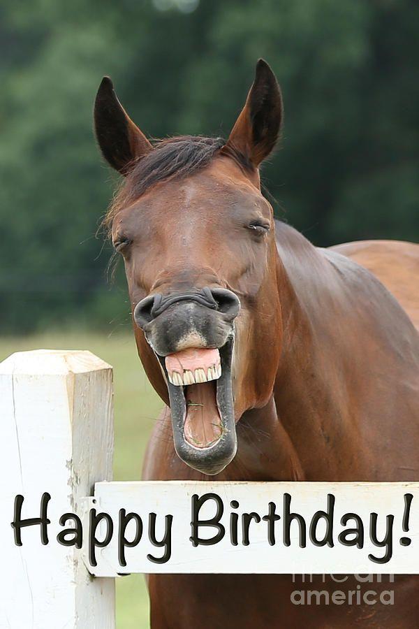 общем поздравление коня с днем рождения пятничных пьянках