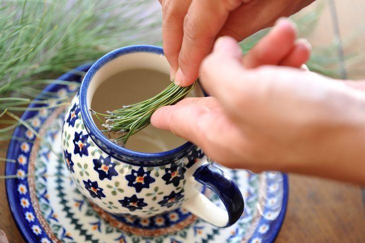 Como Fazer Chá de Agulhas de Pinheiro