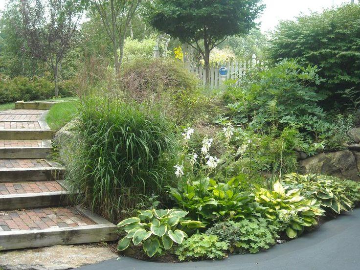 small yard - slope