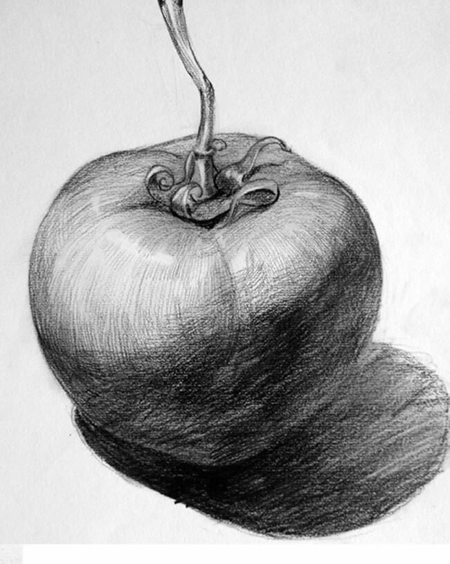 Academic drawing Academic still life