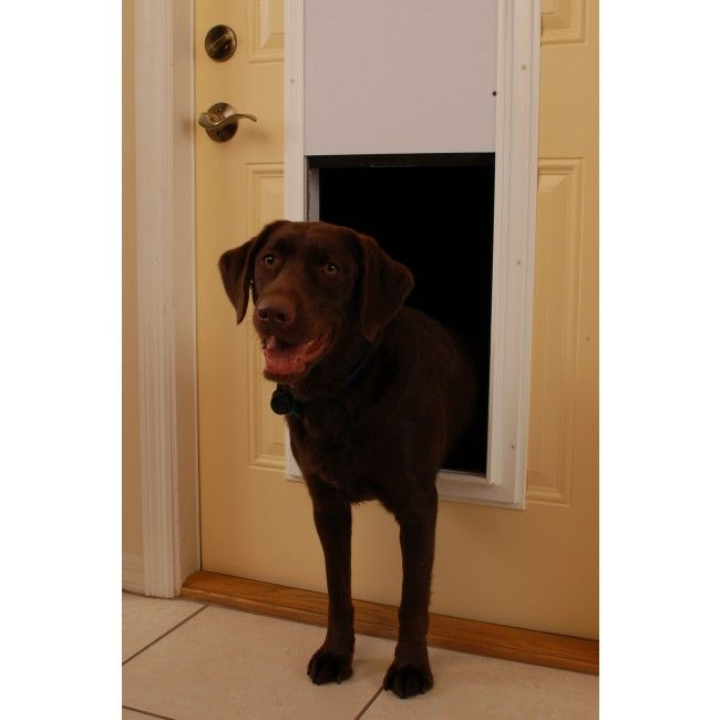 Plexidor Electronic Dog Door For Walls America S Finest