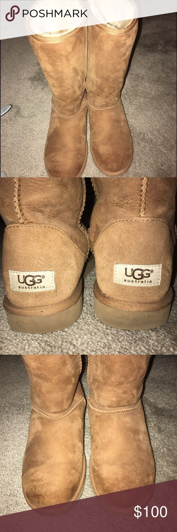 Tall Chesnut Uggs Authentic Women's classic tall UGG boots in color Chesnut, excellent condition on inside and outside, no matting of the wool on the inside UGG Shoes Winter & Rain Boots